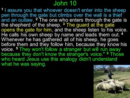 John 10 1 I assure you that whoever doesn't enter into the sheep pen through the gate but climbs over the wall is a thief and an outlaw. 2 The one who.