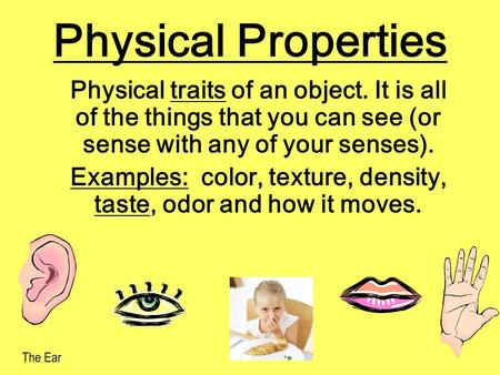 Physical Properties Physical traits of an object. It is all of the things that you can see (or sense with any of your senses). Examples: color, texture,