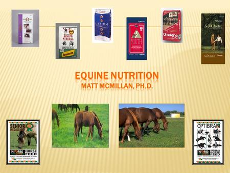  Why are we concerned with equine nutrition?  How did the wild horse evolve and survive?  Reduction in the number of toes  Increase in the size of.