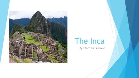 The Inca By : Zach and Andrew. Food, Clothing, and shelter  Incas grew crops like corn, cotton, and potatoes  grew and ate a root called oca and a grain.