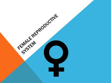 FEMALE REPRODUCTIVE SYSTEM.  What the female reproductive system does… The female reproductive system enables a woman to:  produce eggs (ova)  have.
