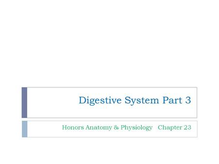 Digestive System Part 3 Honors Anatomy & Physiology Chapter 23.