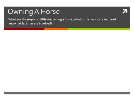  Owning A Horse What are the responsibilities in owning a horse, what is the basic care required and what facilities are involved?