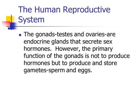 The Human Reproductive System The gonads-testes and ovaries-are endocrine glands that secrete sex hormones. However, the primary function of the gonads.