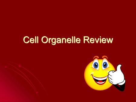 Cell Organelle Review. This organelle converts sunlight energy into chemical energy (in photosynthesis) This organelle converts sunlight energy into chemical.