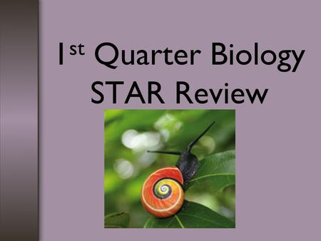 1 st Quarter Biology STAR Review. Scientific Method 1.Observation is made using one of your 5 senses. 2.A hypothesis is a proposed explanation for the.