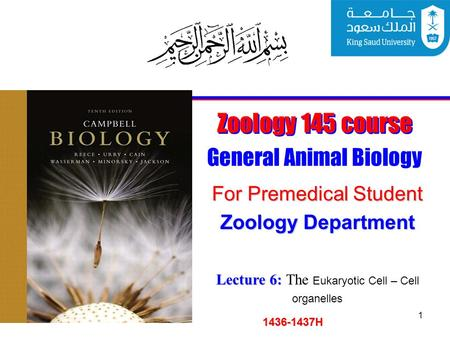 1 Zoology 145 course General Animal Biology For Premedical Student 1436-1437H Zoology Department Lecture 6: Lecture 6: The Eukaryotic Cell – Cell organelles.