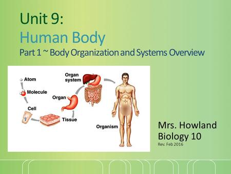 Unit 9: Human Body Part 1 ~ Body Organization and Systems Overview Mrs. Howland Biology 10 Rev. Feb 2016.