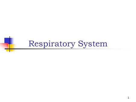 1 Respiratory System. 2 Main functions: Provide oxygen to cells Eliminate carbon dioxide Works closely with cardiovascular system to accomplish gas exchange.