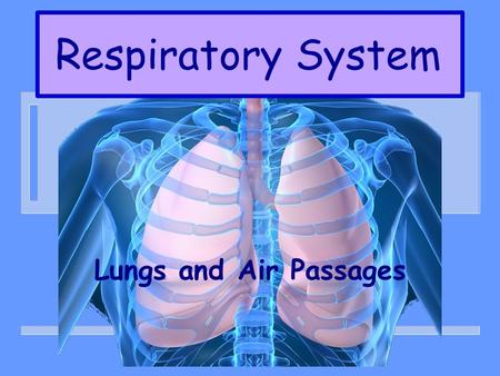 Respiratory System Lungs and Air Passages. WHY ARE THEY NEEDED? n TAKE IN OXYGEN – GAS NEEDED BY ALL BODY CELLS n REMOVING CARBON DIOXIDE – GAS THAT IS.