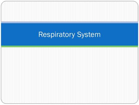 Respiratory System. Functions of the Respiratory System involved in the exchange of oxygen and carbon dioxide gases between the blood and the external.