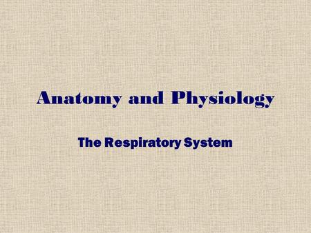 Anatomy and Physiology The Respiratory System. BREATHING https://www.youtube.com/watch?v=zRv5t NCMpyYhttps://www.youtube.com/watch?v=zRv5t NCMpyY.
