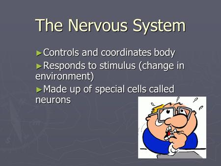 The Nervous System ► Controls and coordinates body ► Responds to stimulus (change in environment) ► Made up of special cells called neurons.