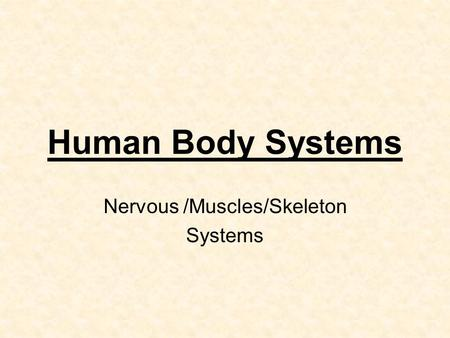 Human Body Systems Nervous /Muscles/Skeleton Systems.