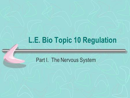 L.E. Bio Topic 10 Regulation Part I. The Nervous System.