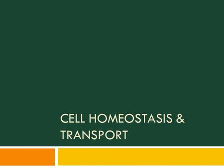 CELL HOMEOSTASIS & TRANSPORT. Cell Transport  Cell transport is moving materials into, out of, or within the cell  Transport within the cell (intracellular)