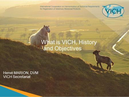 -What is VICH, History and Objectives Hervé MARION, DVM VICH Secretariat.