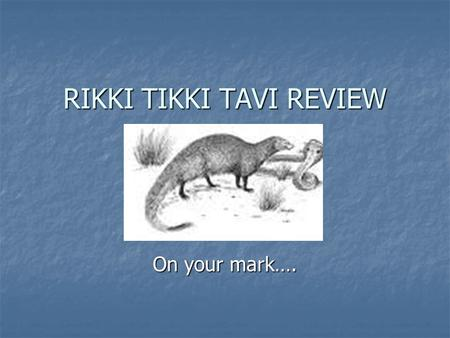 RIKKI TIKKI TAVI REVIEW
