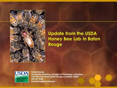 Update from the USDA Honey Bee Lab in Baton Rouge
