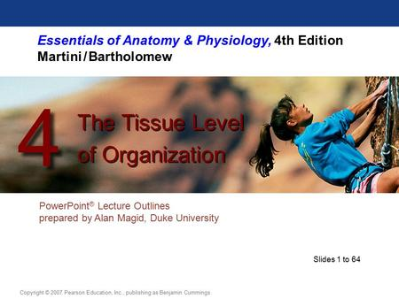 Essentials of Anatomy & Physiology, 4th Edition Martini / Bartholomew PowerPoint ® Lecture Outlines prepared by Alan Magid, Duke University The Tissue.