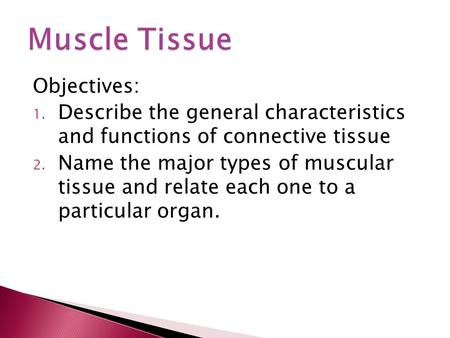Objectives: 1. Describe the general characteristics and functions of connective tissue 2. Name the major types of muscular tissue and relate each one to.