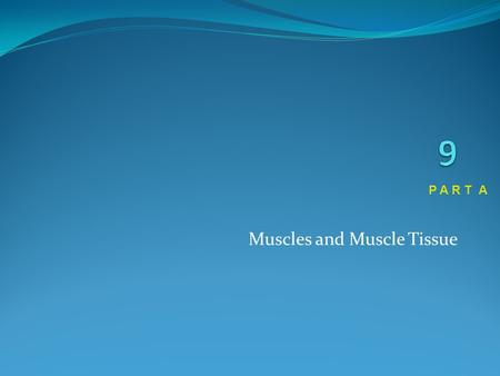 Muscles and Muscle Tissue P A R T A. Muscle Overview The three types of muscle tissue are skeletal, cardiac, and smooth These types differ in structure,
