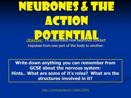 Neurones & the Action Potential Objective: To understand how neurones conduct impulses from one part of the body to another. Write down anything you can.
