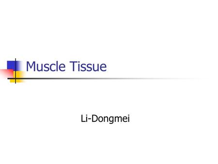 Muscle Tissue Li-Dongmei. Overview of muscle tissue The myocytes is also called muscle fibers. The cytoplasm is called sarcoplasm, and the smooth endoplasmic.