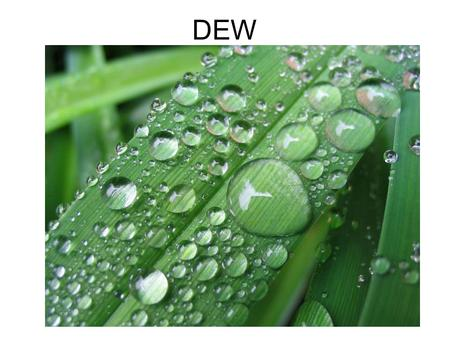 DEW. What is dew? Dew is moisture condensed upon the surfaces of cool objects especially at night. As the exposed surface cools by radiating its heat,