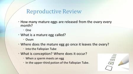 How many mature eggs are released from the ovary every month? One What is a mature egg called? Ovum Where does the mature egg go once it leaves the ovary?
