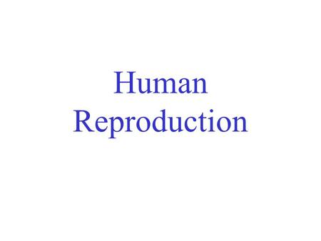 Human Reproduction. Both sexes have –gonads (organs that produce gametes) –Ducts to store and deliver gametes –Structures to facilitate copulation.