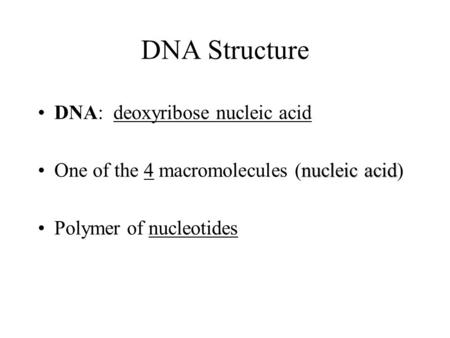 DNA Structure DNA: deoxyribose nucleic acid nucleic acidOne of the 4 macromolecules (nucleic acid) Polymer of nucleotides.