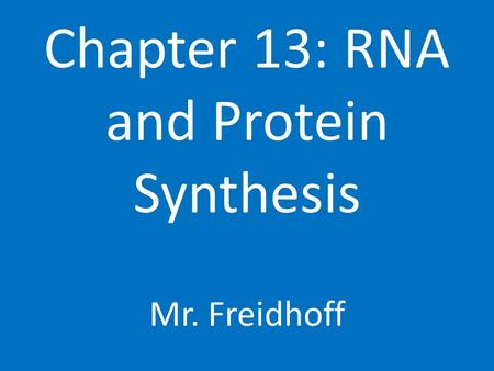 Chapter 13: RNA and Protein Synthesis Mr. Freidhoff.