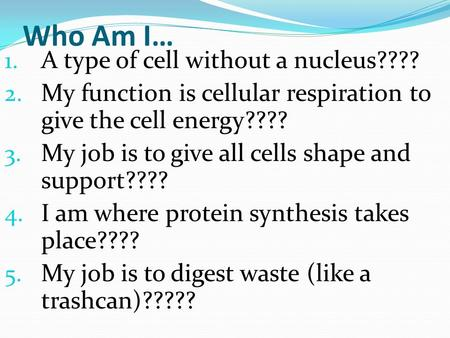 Who Am I… 1. A type of cell without a nucleus???? 2. My function is cellular respiration to give the cell energy???? 3. My job is to give all cells shape.