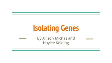 Isolating Genes By Allison Michas and Haylee Kolding.