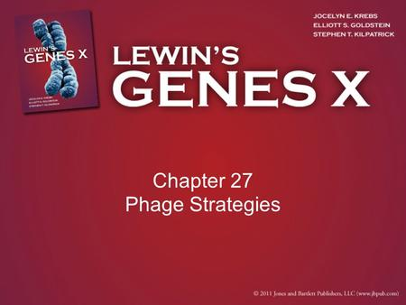 Chapter 27 Phage Strategies