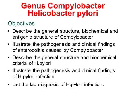 Genus Compylobacter Helicobacter pylori Objectives Describe the general structure, biochemical and antigenic structure of Compylobacter Illustrate the.
