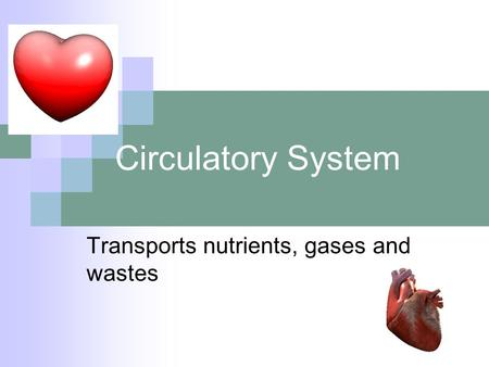 Circulatory System Transports nutrients, gases and wastes.