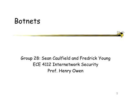 1 Botnets Group 28: Sean Caulfield and Fredrick Young ECE 4112 Internetwork Security Prof. Henry Owen.