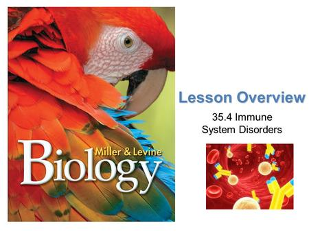 Lesson Overview Lesson Overview Immune System Disorders Lesson Overview 35.4 Immune System Disorders.