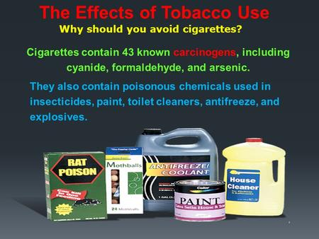 Why should you avoid cigarettes? Cigarettes contain 43 known carcinogens, including cyanide, formaldehyde, and arsenic. The Effects of Tobacco Use They.