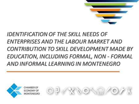 IDENTIFICATION OF THE SKILL NEEDS OF ENTERPRISES AND THE LABOUR MARKET AND CONTRIBUTION TO SKILL DEVELOPMENT MADE BY EDUCATION, INCLUDING FORMAL, NON -