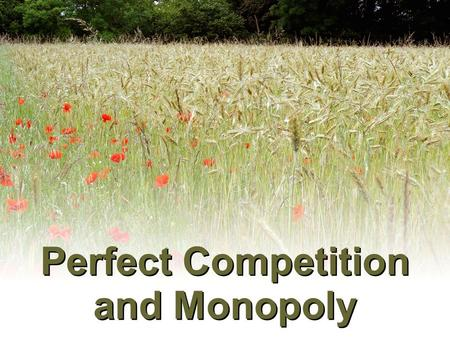 Perfect Competition and <strong>Monopoly</strong>. Alternative <strong>Market</strong> <strong>Structures</strong>.