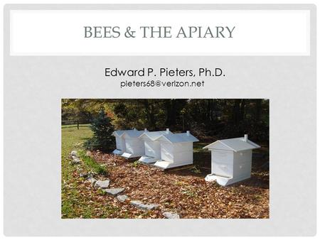 BEES & THE APIARY Edward P. Pieters, Ph.D.