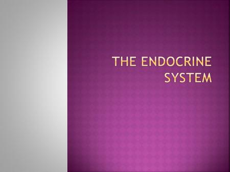  Made up of glands  Endocrine: release hormones into bloodstream travel throughout the body and relay information Exocrine glands release secretions.