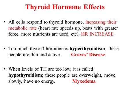 Thyroid Hormone Effects All cells respond to thyroid hormone, increasing their metabolic rate (heart rate speeds up, beats with greater force, more nutrients.