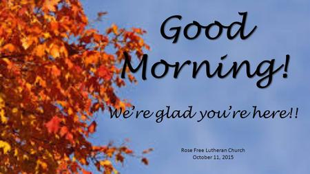 Good Morning! Rose Free Lutheran Church October 11, 2015 We're glad you're here!!