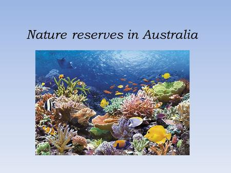 Nature reserves in Australia. The Great Barrier Reef – Wielka Rafa Koralowa The Great Barrier Reef can be seen from outer space and is the world's biggest.