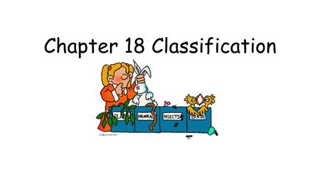 Chapter 18 Classification. 18.1 Finding Order in Diversity Systematics – science of naming and grouping organisms Binomial Nomenclature – two word naming.
