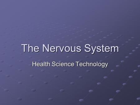 The Nervous System Health Science Technology. Journal: Fun Brain Facts How much does a human brain weigh? How about an elephant or rat brain? How much.